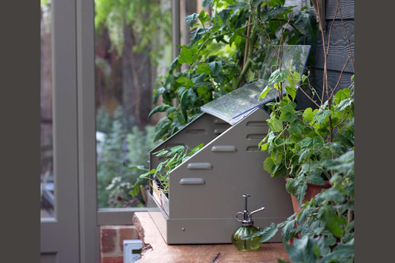 Alitex Professional Propagator in glasshouse (Alitex greenhouse accessories)