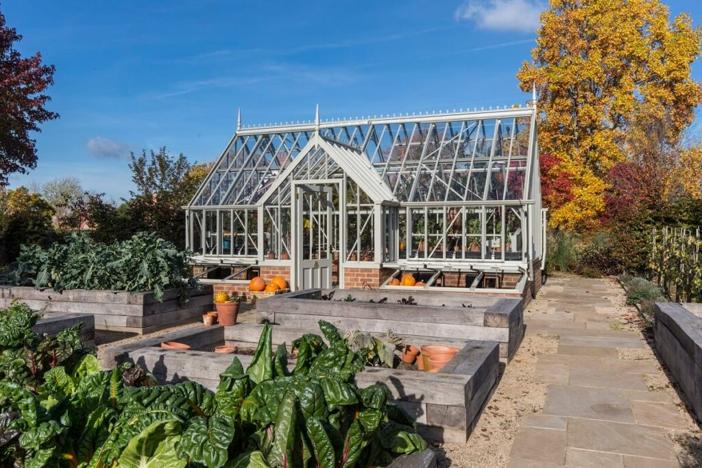 Autumn Colours around the greenhouse
